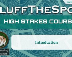 MMASherdog high stakes course